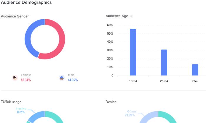 ejemplo de estadísticas de influencia de marketing de tiktok