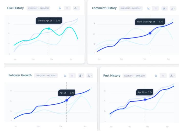 Gráficos de presentación de la herramienta de análisis de Instagram