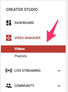 1 vlog exitoso de YouTube
