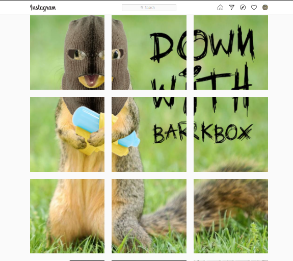 BarkBox Instagram Memes For Squirrel Vs Dog Marketing