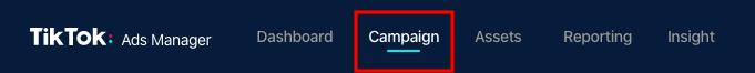 Cómo editar anuncios pagados en TikTok