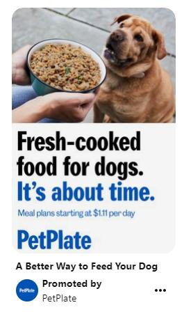 Anuncio que presenta un producto como servicio para los dueños de mascotas