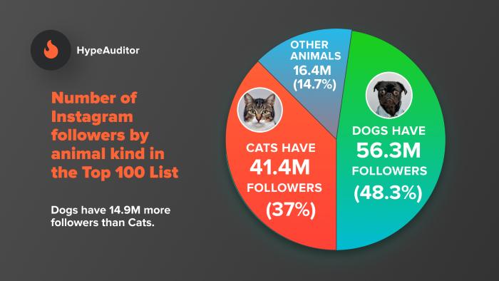 Formas de dirigirse a los propietarios de mascotas mediante anuncios pagados: contenido de influencia sobre mascotas
