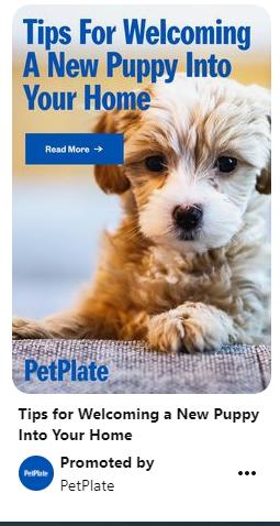 los dueños de mascotas encuentran marcas como PetPlate en las redes sociales