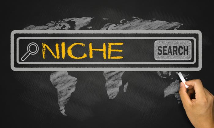 cómo hacer marketing de nicho