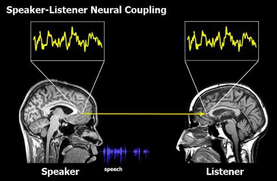 orador oyente acoplamiento neuronal historias de marca