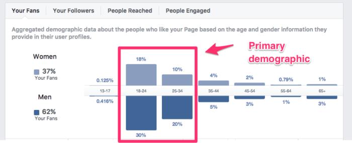 utilice los datos demográficos de Facebook para crear una persona objetivo para su estrategia de marketing entrante